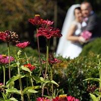 Svadobná fotografia v záhrade - kaštieľ Betliar 2013.