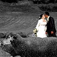 Svadba foto Romantika pod Turniaským hradom.